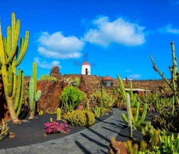 FAST FERRY + VOUCHER FOR 3 CENTRES OF ART, CULTURE AND TOURISM AT LANZAROTE
