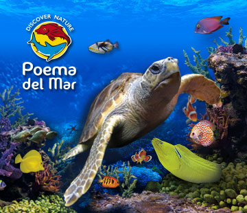 Poema del mar offer Free Child entry per each adult